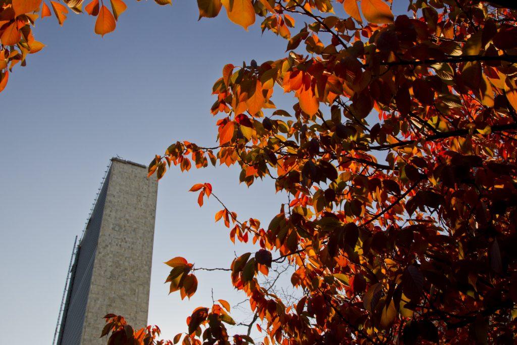autumn-UN