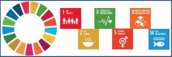 SDG HLPF